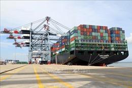 Cục Hàng hải Việt Nam quản lý tài sản kết cấu hạ tầng hàng hải