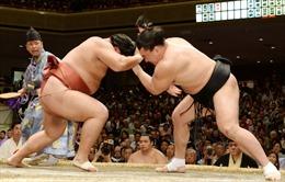 Nhật Bản nối lại giải đấu sumo có khán giả