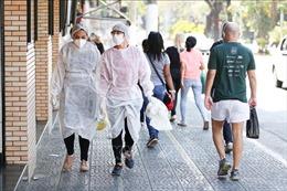 WHO: Tốc độ lây lan của dịch có dấu hiệu chậm lại tại một số khu vực