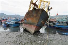 Ngư dân chật vật vì cảng cá bị bồi lấp
