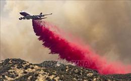 Sơ tán gần 8.000 người do cháy rừng tại Nam California