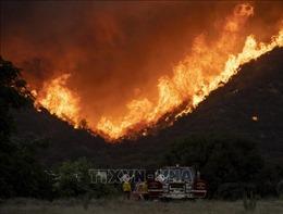 Thêm 4 người thiệt mạng do cháy rừng tại Bắc California