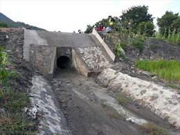 Gia Lai yêu cầu khẩn trương sửa chữa công trình thủy lợi Plei Keo