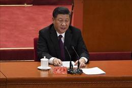 Chủ tịch Trung Quốc Tập Cận Bình phát động 'Chiến dịch đĩa trống'