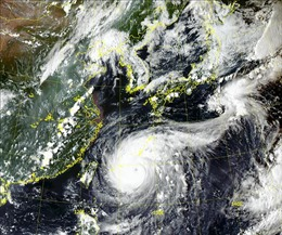 Hàn Quốc, Trung Quốc cảnh báo bão Maysak mạnh hơn bão Bavi