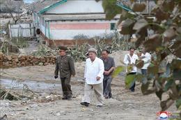 Truyền thông Triều Tiên nêu bật nỗ lực khắc phục hậu quả 3 cơn bão liên tiếp