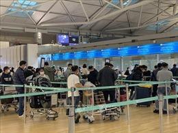 Đưa 450 công dân Việt Nam từ Hàn Quốc về nước