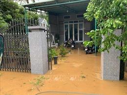 Lũ bất ngờ đổ về gây ngập tại miền núi tỉnh Bình Định