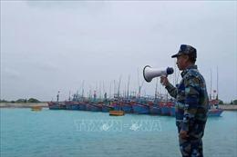 Điều động 3 tàu kiểm ngư tìm kiếm ngư dân Bình Định mất tích