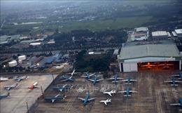 Đề xuất thu hồi giấy phép bay của Công ty cổ phần Hàng không Bầu Trời Xanh