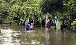 Vùng 'rốn lũ' Đại Lộc chủ động ứng phó với mưa lũ lớn kéo dài
