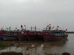 Thanh Hóa chuẩn bị các phương án chống bão số 7 tại khu vực ven biển, miền núi