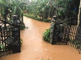 Bình Định khắc phục hậu quả mưa lũ