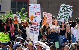 Lãnh đạo New York (Mỹ) quyết tâm bảo vệ Hiệp định Paris về biến đổi khí hậu