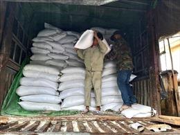 Dự trữ lương thực cho người dân Quảng Nam để ứng phó bão số 13