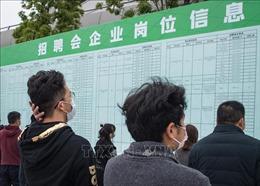 81 triệu lao động ở khu vực châu Á - Thái Bình Dương thất nghiệp do COVID-19
