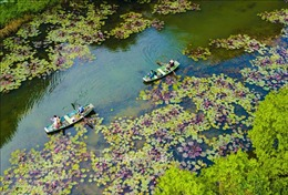 Năm 2020, khách quốc tế đến Việt Nam giảm gần 80%