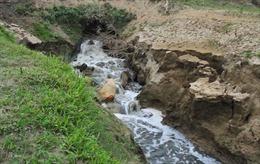 Bị phạt 255 triệu đồng vì xả thải chưa xử lý ra môi trường