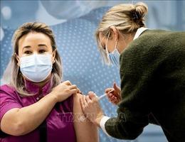 Hà Lan là nước cuối cùng trong EU triển khai tiêm vaccine phòng COVID-19