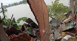 Sạt lở nghiêm trọng bờ Tây Sông Hậu, di dời khẩn cấp 3 nhà dân