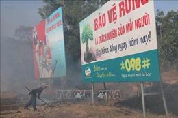 Triển khai phòng cháy, chữa cháy rừng mùa khô