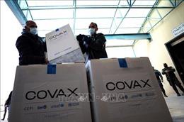 Nguồn cung vaccine của COVAX bị ảnh hưởng do nhà sản xuất Ấn Độ hoãn bàn giao