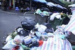 Phạt nguội một cá nhân ở Đà Lạt đổ rác sai nơi quy định