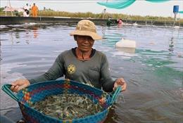 Nam Bộ khô nóng kéo dài, bất lợi cho người nuôi trồng thủy sản