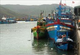 Nhiều tàu cá mất tín hiệu thiết bị giám sát hành trình
