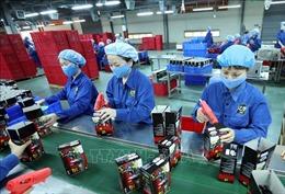 Hội thảo hợp tác thúc đẩy thương mại và đầu tư Việt Nam - Nga