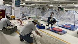 Bình Dương thành lập 2 bệnh viện dã chiến quy mô 3.000 giường