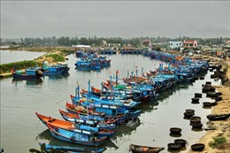 Hỗ trợ 100% chi phí cách ly cho ngư dân trên các tàu cá neo đậu tại cảng Sa Huỳnh
