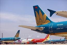Cục Hàng không Việt Nam lên kế hoạch mở lại đường bay nội địa theo 3 nhóm