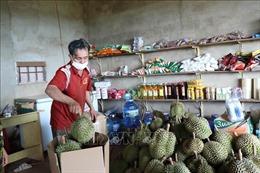 Đắk Lắk bảo đảm tiêu thụ nông sản gắn với phòng, chống dịch