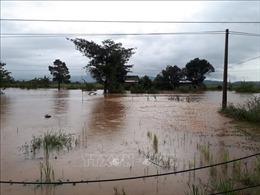 Đề phònglũ quét, sạt lở đất và ngập úng cục bộ tại Đắk Lắk và Lâm Đồng