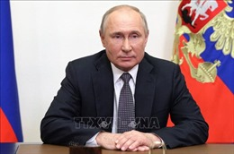 Bầu cử Duma Quốc gia Nga: Tổng thống Putin bỏ phiếu trực tuyến