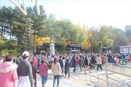 Lượng khách hai chiều giữa Việt Nam – Hàn Quốc tăng trưởng hơn 30%