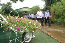 Hồng Vân – điểm sáng xây dựng nông thôn mới kết hợp với du lịch