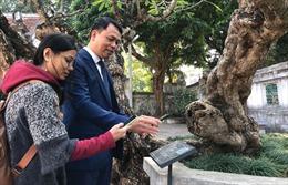 'Du ngoạn' di tích Hà Nội bằng công nghệ trong bối cảnh dịch COVID-19