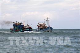 Thông tin tàu Hải Dương 19 đâm chìm tàu cá Bình Thuận trên vùng biển Bà Rịa-Vũng Tàu là không chính xác
