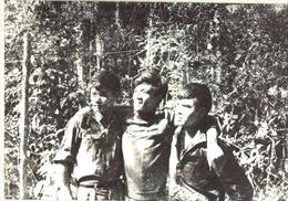 Từ 'chuyến mua lúa' đặc biệt đến bản tin về ngày giải phóng hoàn toàn miền Nam