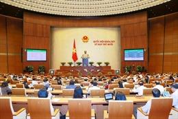 Kỳ họp thứ 10, Quốc hội khoá XIV: Nhiều ý kiến chất lượng, giải đáp sắc bén