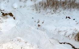 Lở tuyết ở Ấn Độ khiến nhiều người mất tích