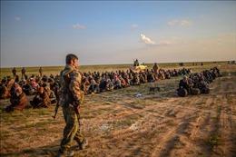 Trên 3.000 tay súng IS ra hàng ở miền Đông Syria