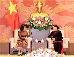 Quốc hội Việt Nam sẽ hợp tác chặt chẽ với Quốc hội, Thượng viện Campuchia