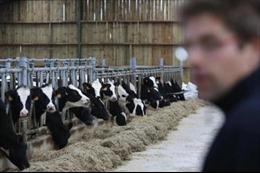 Canada ưu tiên hỗ trợ nông dân chịu tác động của CETA và CPTPP
