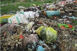 Ô nhiễm do rác thải ở nông thôn - Bài 1: Những áp lực từ hoạt động kinh tế - xã hội