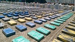 Pháp bắt giữ nửa tấn cocaine