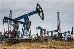 Khả năng OPEC và các đối tác cắt giảm nguồn cung đẩy giá dầu đi lên