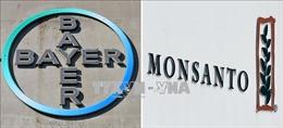 Tòa án Mỹ buộc Monsanto trả hơn 2 tỷ USD cho một cặp vợ chồng mắc ung thư
